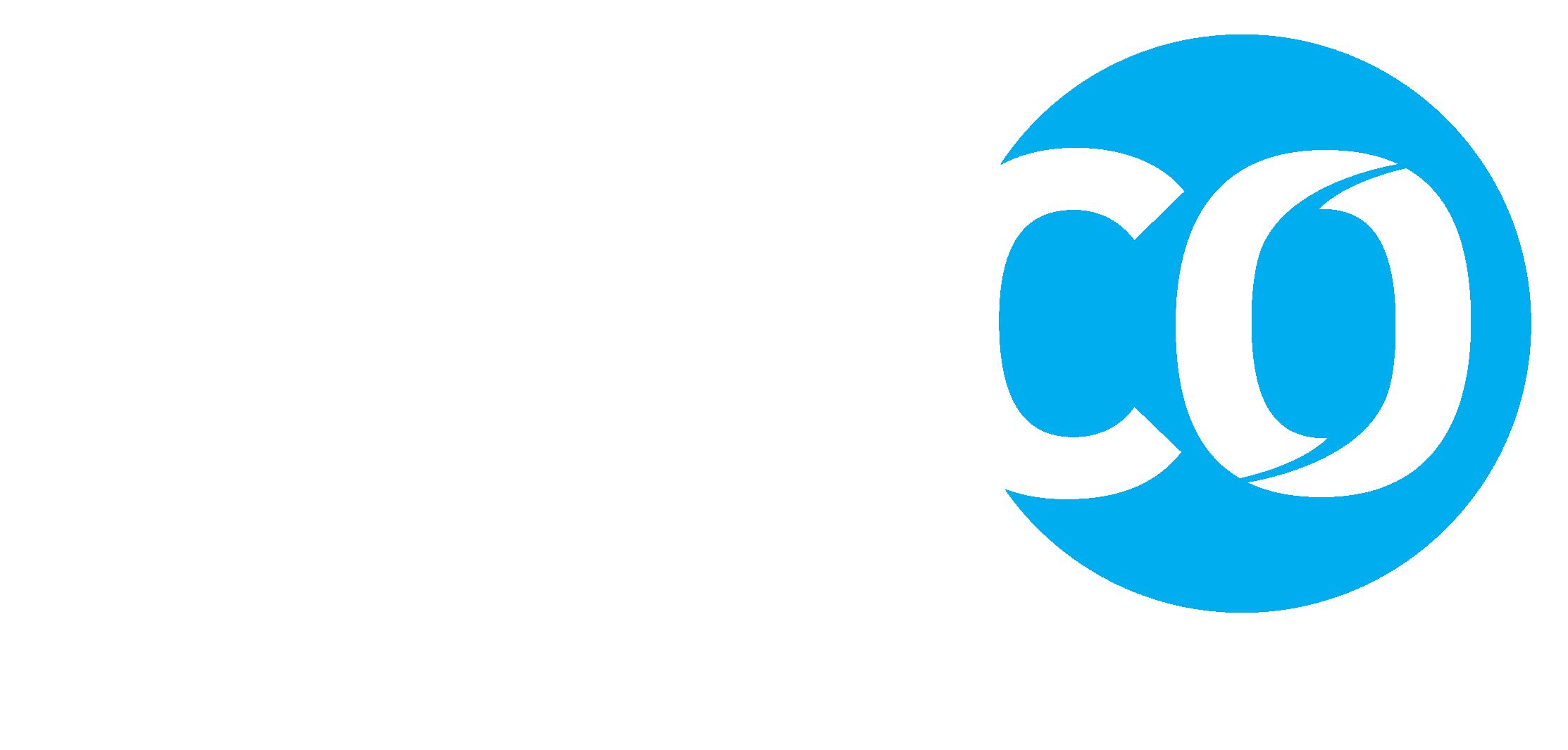 neuco – Global recruitment executive search